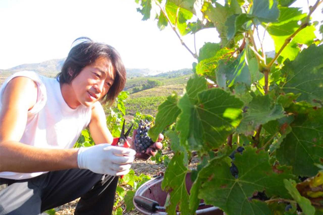 https://www.ecoleduvindebordeaux.com/osamu-uchida-a-japanese-winegrower-in-the-heart-of-the-medoc/