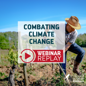 Combating Climate Change Webinar Replay