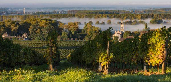 Bordeaux_CR-Favoreat