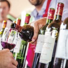 Dégustation, mode d'emploi - L'Ecole du vin de Bordeaux