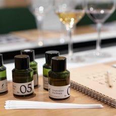 Les parfums du vin - L'Ecole du vin de Bordeaux