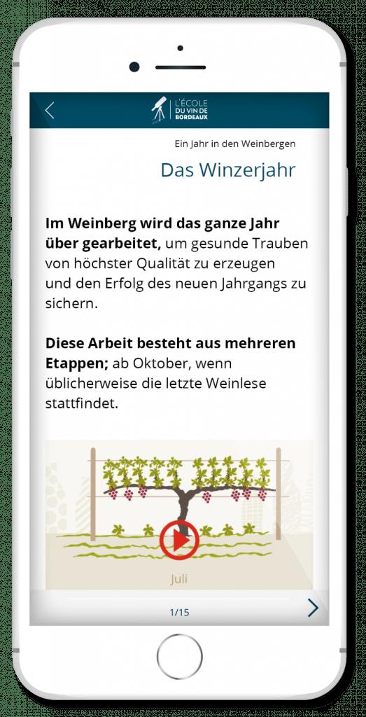 OenoBordeaux Wein-Lern-App - Screenshot 4