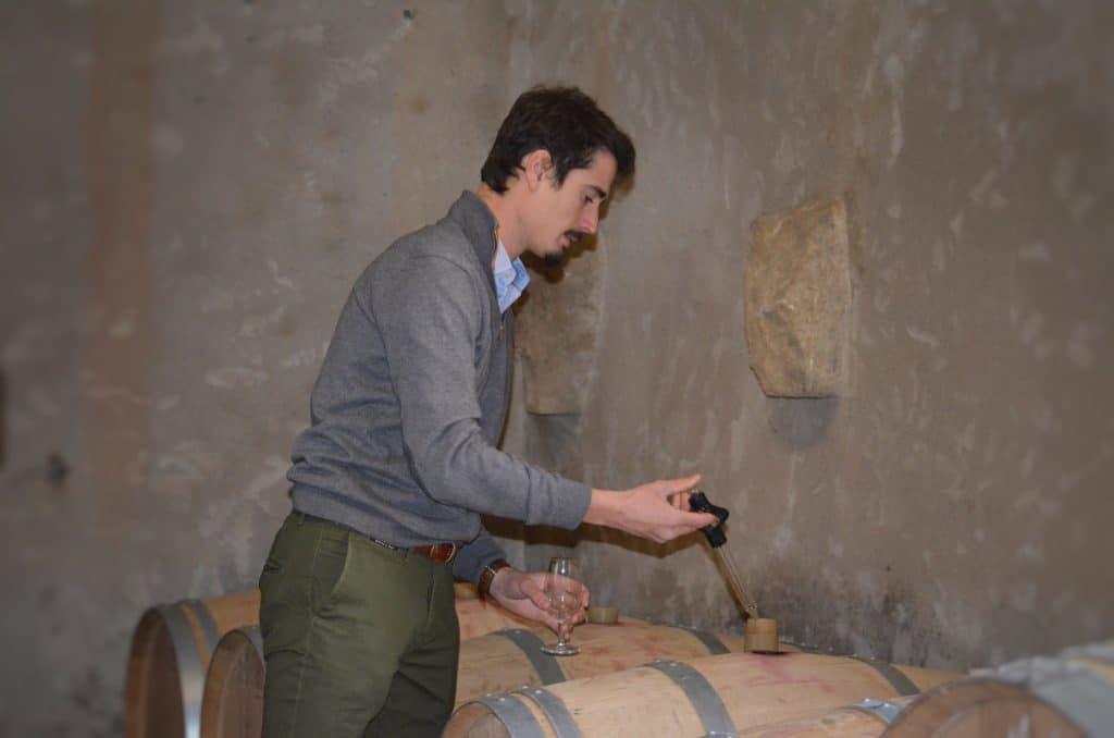 Nachhaltiger Weinbau - Julius Luddecke im Keller