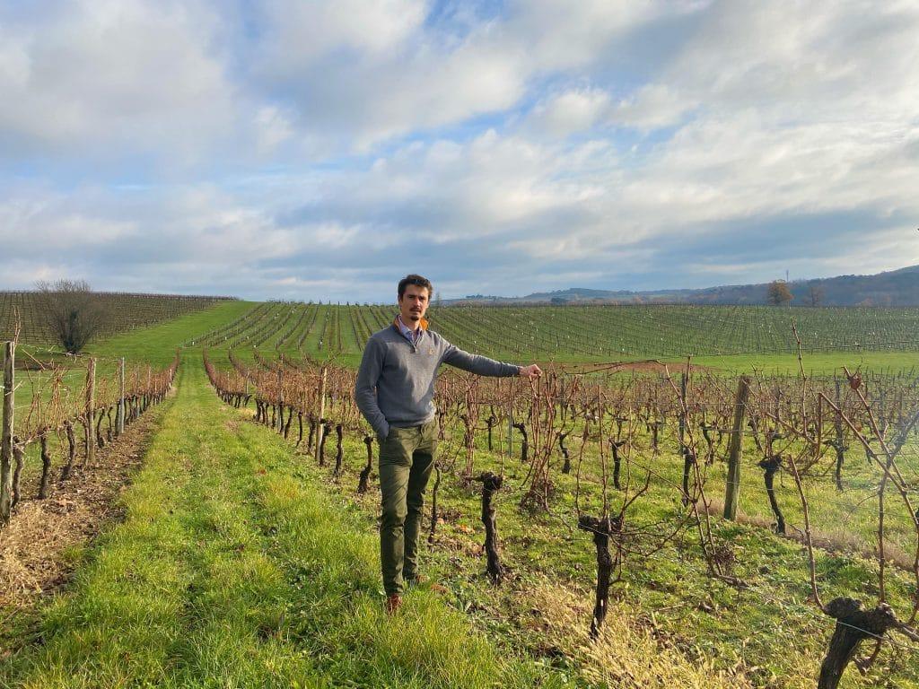Nachhaltiger Weinbau - Julius Luddecke im Weinberg